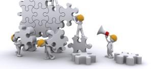 Organización  y Negocio